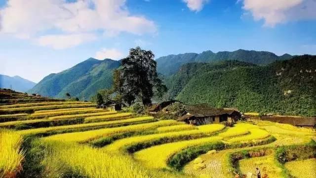 金秋十月,永州将成为全国最美的城市!