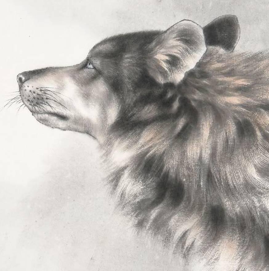 2010年结识著名工笔动物画家唐坚先生后拜其门下,得到了老师精心教育
