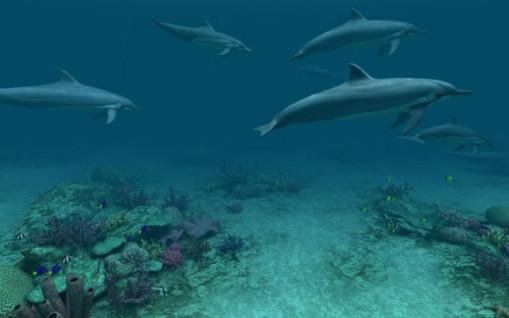壁纸 海底 海底世界 海洋馆 水族馆 桌面 509_318