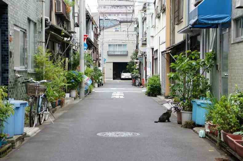 日本街道_大多数日本人有着保持卫生的良好习惯和高度自律,日本的街道干净整洁