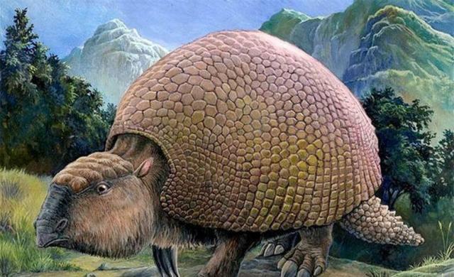 濒临灭绝的动物-濒临灭绝的动物介绍