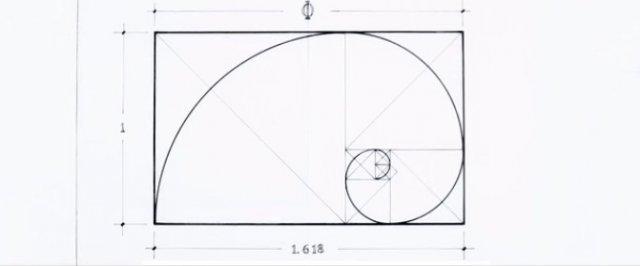 用圆规画出蝴蝶步骤