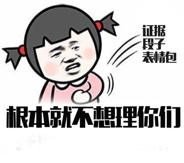 中国并不想理你, 并向你丢了一堆证据,段子,表情包图片