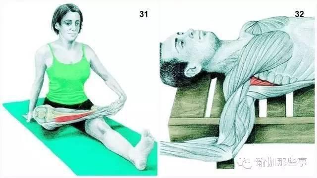 必须收藏! 肌肉拉伸中的瑜伽绝密文件 - 沐浴露 - 沐浴露